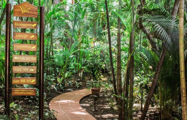 фотографии отеля Villas Lirio (ex. Best Western Hotel Villas Lirio) изображение №11