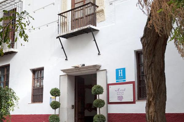 фотографии Palacio de Santa Ines изображение №36