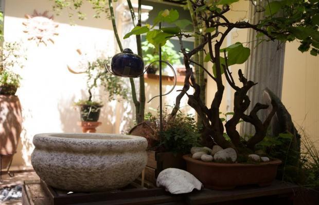 фото Hotel Terme Olympia изображение №10