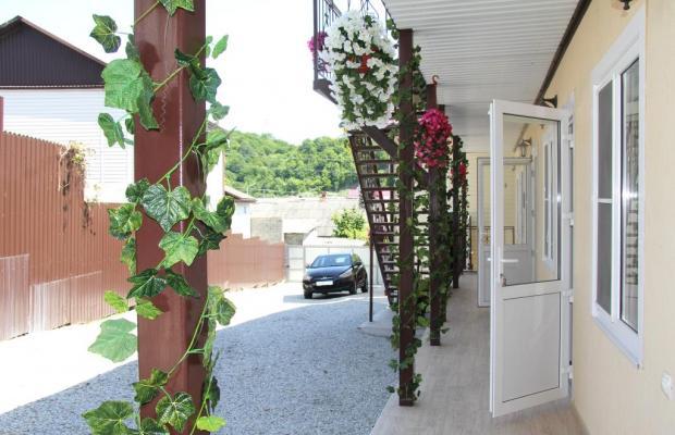 фото Гостевой Дом Елена (Elena Dzhubga) изображение №34