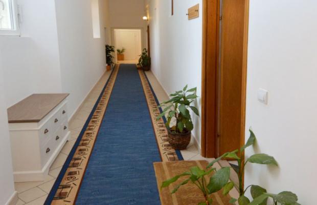 фотографии Villa Mediteran & Ragusa изображение №24