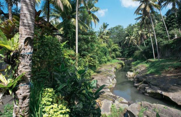 фотографии Bali Spirit Spa изображение №8