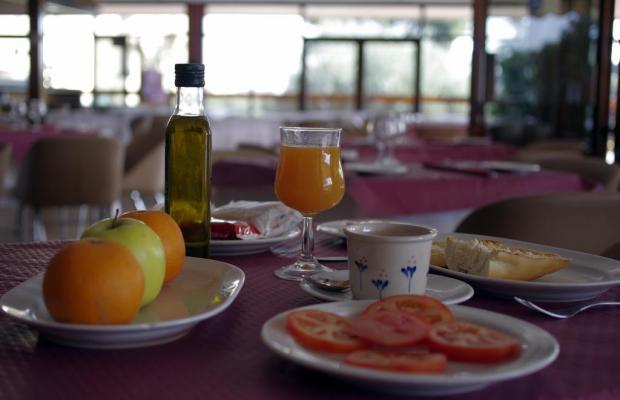 фотографии отеля Los Olivos изображение №35