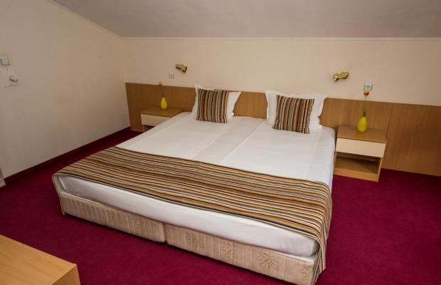 фотографии отеля Diva Hotel & Wellness (Дива Отель & Велнес) изображение №11