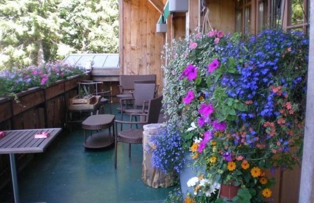фотографии Chalet Hotel Le Collet изображение №28