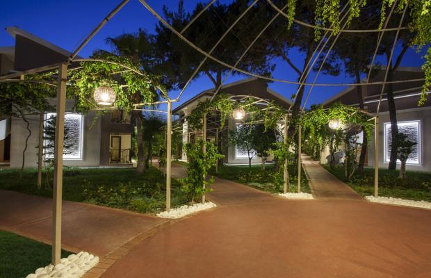 фотографии отеля Club Hotel Turan Prince World изображение №43