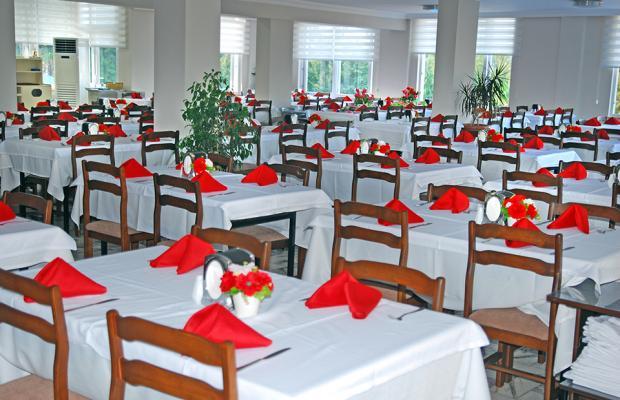 фотографии отеля Club Hotel Sidelya изображение №15