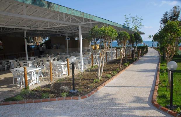 фотографии отеля Akin Paradise (ex.Grand Paradise) изображение №3
