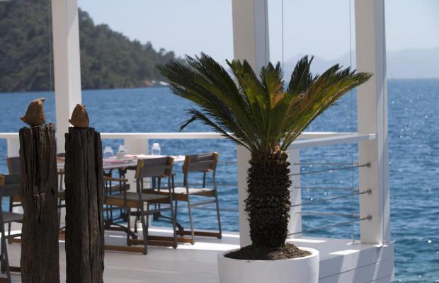 фото отеля D-Resort Gocek (ex. Swissotel Gocek Marina Resort) изображение №33