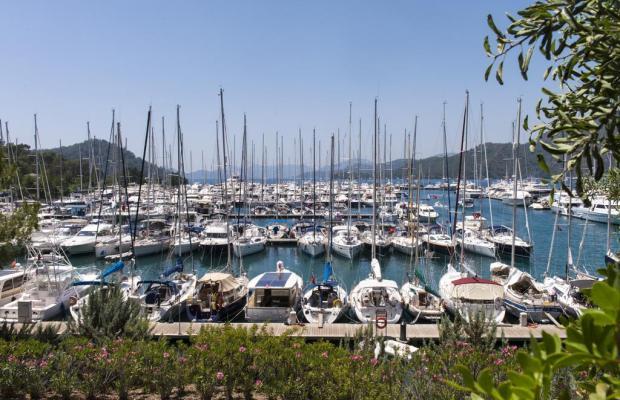 фотографии D-Resort Gocek (ex. Swissotel Gocek Marina Resort) изображение №8