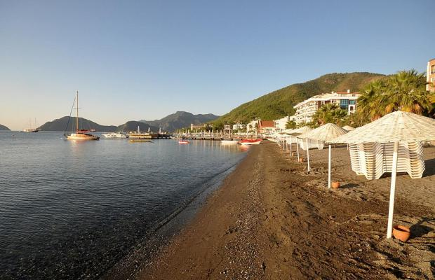 фотографии отеля Tropikal Beach (ex. Tropical Hotel)  изображение №31