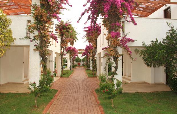 фотографии отеля Club Kastalia изображение №19