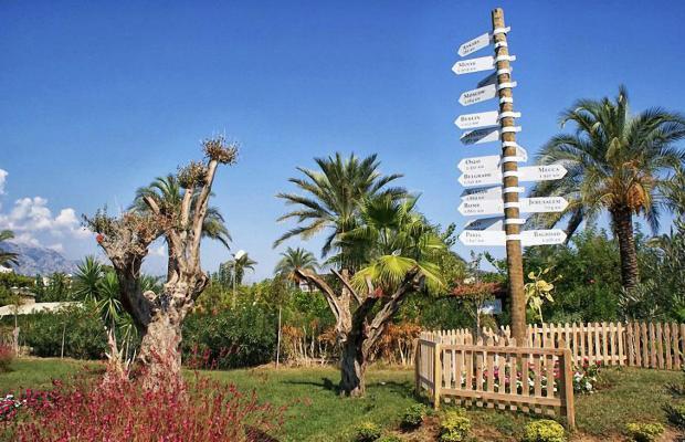 фотографии отеля Zena Resort (ex. Riva Zena) изображение №27