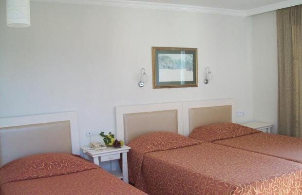 фотографии Hotel Vanilla изображение №24
