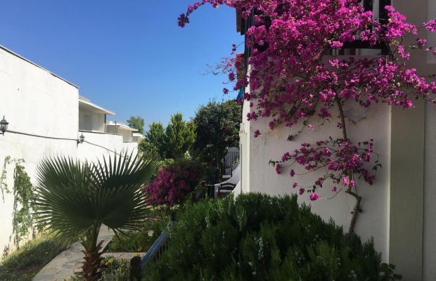 фотографии отеля Salinas Beach изображение №11