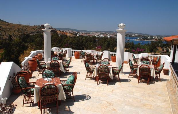 фото отеля Hotel Olimpos изображение №13