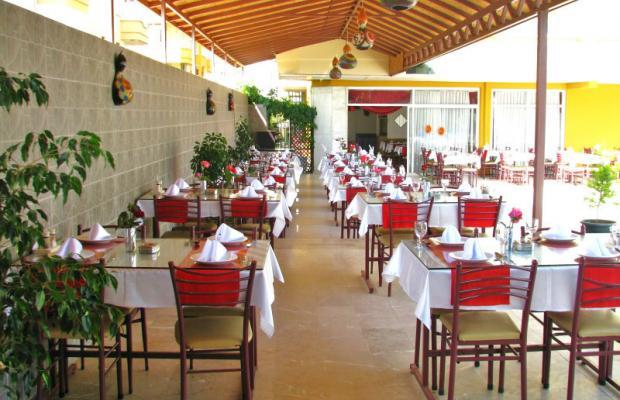 фотографии отеля Dim Suit Hotel изображение №7