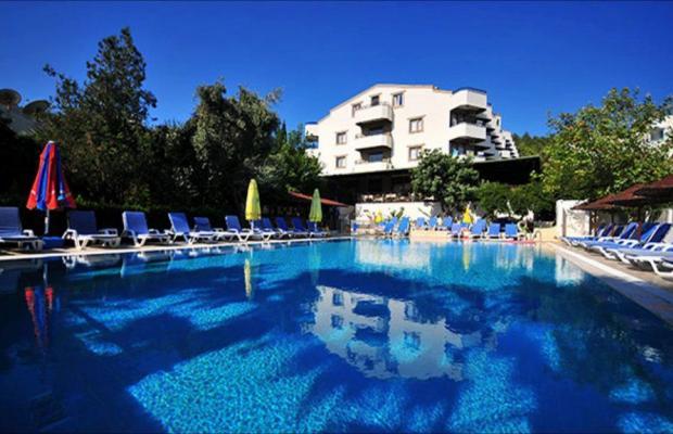 фотографии отеля Adler Hotel изображение №15