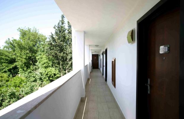 фотографии Bodrum Sofabed Hotel изображение №40