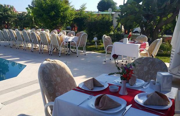 фотографии отеля Palma Rosa изображение №3