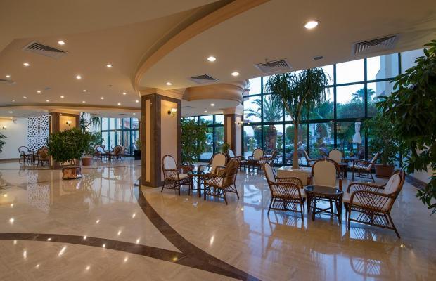 фото отеля Miramare Queen изображение №25