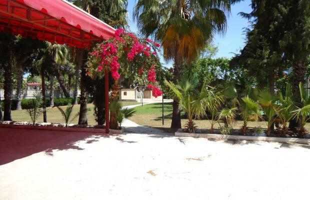 фото Larissa Hotel Mare Beach изображение №18