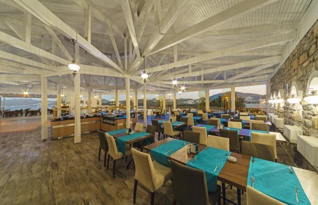 фотографии отеля Riva Bodrum Resort (ex. Art Bodrum Hotel & Club) изображение №39
