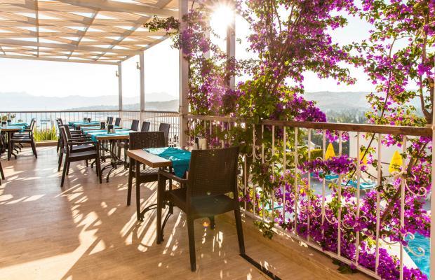 фото отеля Riva Bodrum Resort (ex. Art Bodrum Hotel & Club) изображение №13
