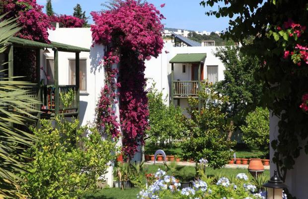 фотографии отеля Parkim Ayaz изображение №23