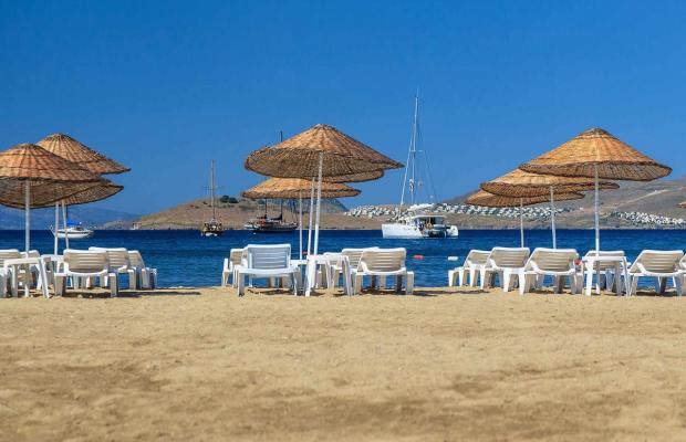 фото отеля Bitez Kassandra Hotel изображение №9