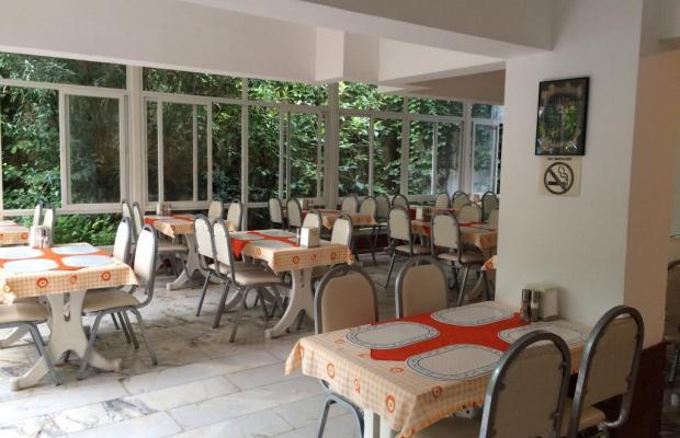 фотографии отеля Orkide изображение №7