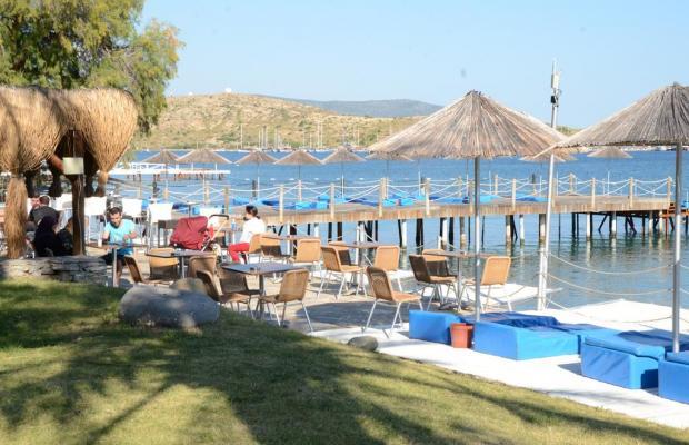 фотографии отеля Rexene Resort (ex. Barcello Rexene Resort) изображение №31