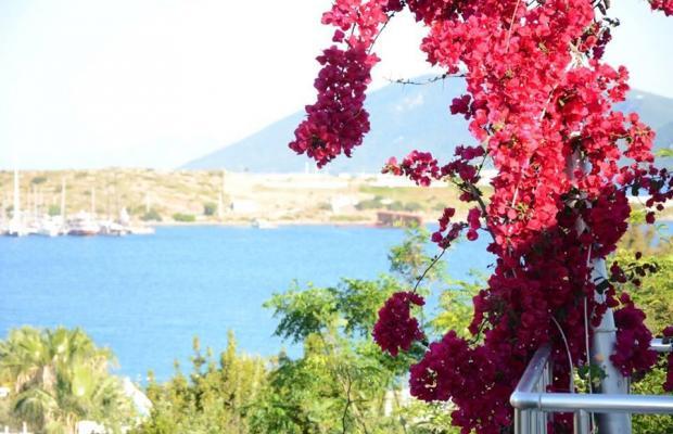 фото отеля Rexene Resort (ex. Barcello Rexene Resort) изображение №5