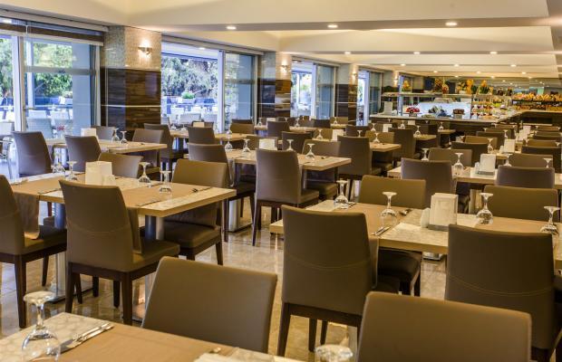 фотографии отеля Avena Resort & SPA (ex. Gold Safran) изображение №39