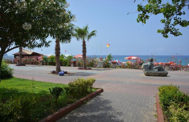 фотографии Kleopatra Dreams Beach изображение №4