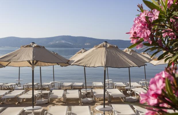 фотографии отеля Aurum Didyma Spa & Beach Resort (ex. Club Okaliptus) изображение №19
