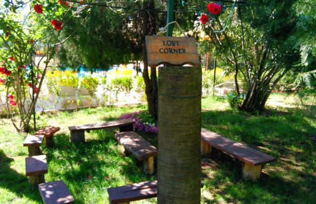 фотографии отеля Club Turkuaz Garden изображение №3