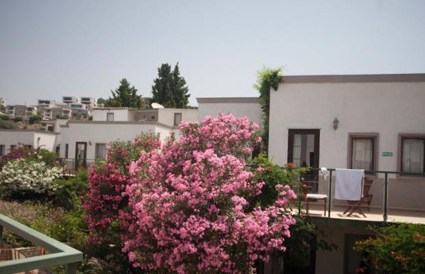 фотографии отеля Club Mira Luna (Club Admira) изображение №19