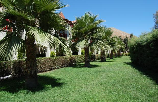 фотографии отеля Tiana Beach Resort (ex. Serene Beach Resort; Kerem Resort) изображение №15