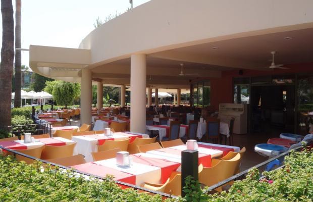 фото Palmeras Beach Hotel (ex. Club Insula) изображение №34