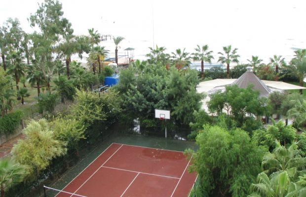 фотографии Palmeras Beach Hotel (ex. Club Insula) изображение №16