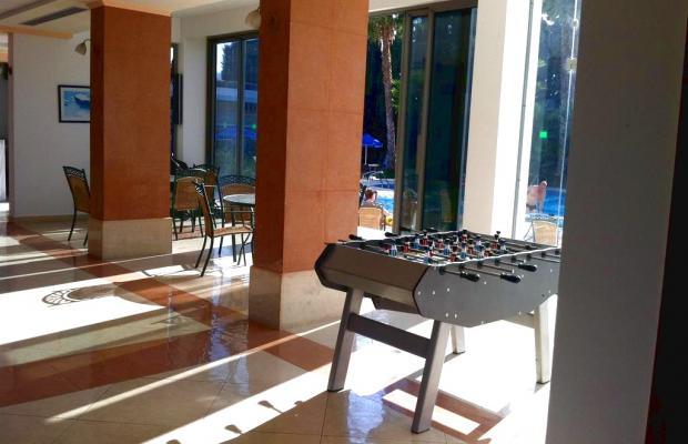 фотографии отеля Olgas Paradise изображение №15