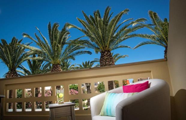 фотографии отеля Drossia Palms Hotel Studios  изображение №39