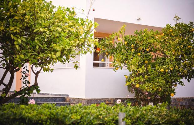 фотографии отеля Paradise Primavera Apartments изображение №7