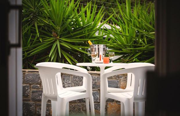 фото отеля Paradise Primavera Apartments изображение №5