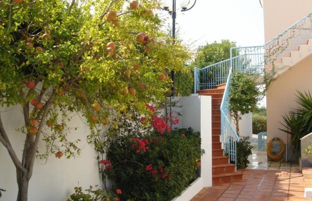 фотографии отеля Golden Dream Apartments изображение №3