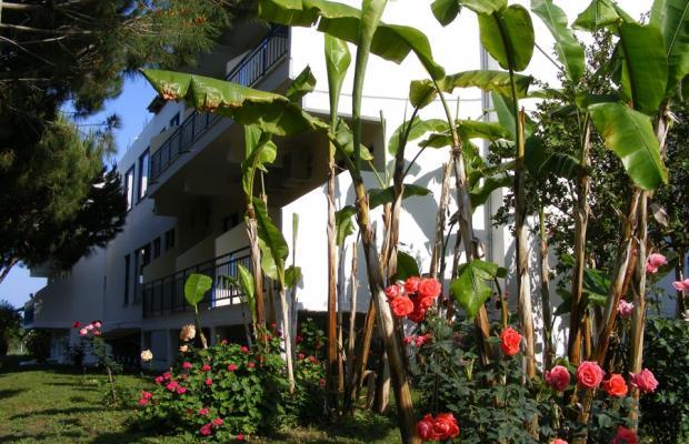 фотографии отеля Lintzi изображение №23