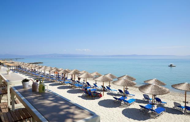 фото отеля Ammon Zeus изображение №25