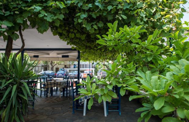 фотографии Alexandros Hotel изображение №24