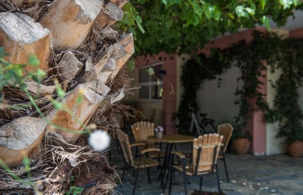 фотографии отеля Alexandros Hotel изображение №23